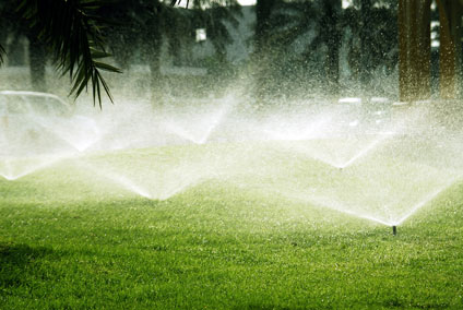 Image result for sprinkler service